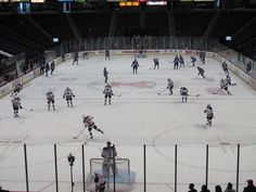 And then maybe take in an Albany Devils Game!