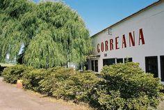 Gorreana Tea, where I would like to take a vacation