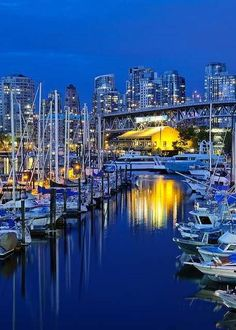 Vancouver Awesome Beauty!   - Explore the World with Travel Nerd Nici, one Country at a Time. http://TravelNerdNici.com