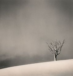 silent world ~ michael kenna