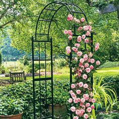 Weather-proof iron arch with a French accent, perfect support for climbing vines, such as roses, clematis, wisteria. Excellent outdoor garden or landscape piece. Arch Trellis, Rose Trellis, Clematis, Garden Arches, Rose Garden Design, Spring Hill Nursery, Metal Garden Art, Climbing Vines, English Country Gardens