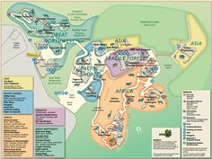 Africa Alive Zoo Map Zoos Around the World Pinterest Zoos