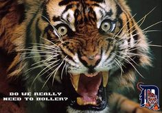 eeny meeny miny moe catch a tiger by the toe if he hollers let him go.... Go Detroit Tigers! ~ by: Leslie Roeder