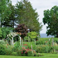 Cutting Garden - Coastal Garden Estate: Hosmer Garden - Coastal Living | The vegetable and cutting gardens lie to the side of the house, buffered by raspberry bushes and capped with a rose-covered arbor. Growing a lavish cutting garden is all about planning for the right ingredients, so Cynthia chooses poppies, daylilies, roses, alliums, asters, and hollyhocks. She calls upon the hostas—both flowers and foliage—as filler for her bouquets.