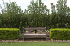We Love: Garden Benches Things We Love: Garden Benches Maybe do this planting scheme by the pool - with the bench.Things We Love: Garden Benches Maybe do this planting scheme by the pool - with the bench.