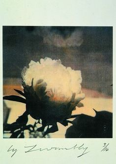 zzzze:Cy Twombly, Peonies