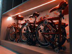 Bike bed..