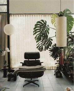 Monstera at the Eames house. Decor, Monstera, Eames House, Mid Century Modern Interiors, Decor Inspiration, House Interior, Interior Inspiration, Eames Lounge Chair, Hotel Interior Design