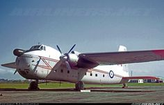 Bristol 170 Freighter Mk31M aircraft picture