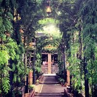 Gallow Green (Rooftop Garden Bar at the McKittrick Hotel) - Chelsea - New York, NY