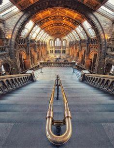 Natural History Museum London: