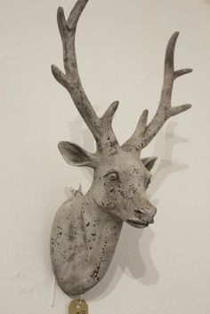 stags head for plain wall