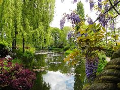 jardin Monet