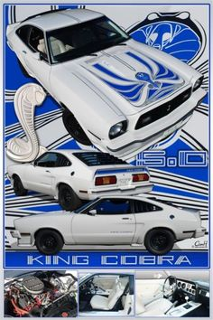 2017 Mustang, White King, King Cobra, Old Fords, Ford Fairlane, Ford Mustangs, Pony Car, Car Drawings, Nice Cars