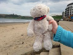 Found on 17 May. 2016 @ Scarborough North Bay. We found a bear with no eyes with a little bandana - we'd love to find who he belongs to Visit: https://whiteboomerang.com/lostteddy/msg/r4tx3h (Posted by Jo on 21 May. 2016)