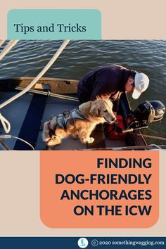 Traveling the ICW with your dog? Do you know how to find the best dog-friendly anchorages? Here's our best tips. Dogs On Boats, Great Places To Travel, Edisto Island, Living On A Boat, Dog List, Kinds Of Dogs, Pet Travel, Dog Friends