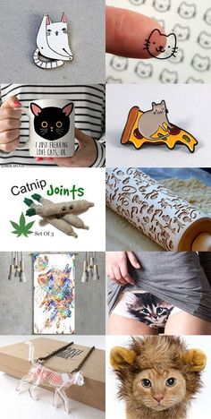 #Cat, cat, CAT!!! #cat