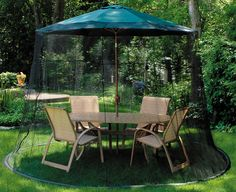 Found it at Wayfair - 9' Mosquito Net in Black