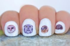These little decals/transfers are made from real pictures of different types of owls. #owls #cuteowls #naildecals #nails #obscuraoutfitters #cute #nailideas