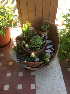 Our fairy garden