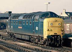 British Rail, Diesel Locomotive, Trains, Blue, Train