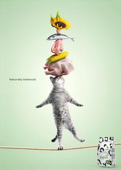 Safari on Behance - Poster Food Poster Design, Creative Poster Design, Ads Creative, Creative Posters, Creative Banners, Food Advertising, Creative Advertising, Advertising Design, Safari
