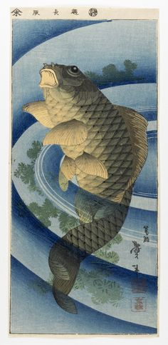 Carp  ca. 1840s    Katsushika Taito II , (Japanese,   Edo period     Woodblock print; ink and color on paper  H: 35.7 W: 16.7 cm   Japan