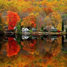 Autumn in New England. This makes me miss the beautiful Fall colors in New England. Autumn Scenes, Fall Photos, Fall Pictures, Scenery Pictures, Fall Pics, Garden Pictures, Nature Pictures, Belle Photo, Autumn Leaves