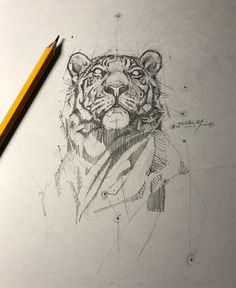 Tiger sketch tattoos in 2019 draw, animal sketches, art drawings. Animal Sketches, Animal Drawings, Drawing Sketches, Art Drawings, Pencil Drawings, Pencil Art, Drawing Tips, Drawing Ideas, Tiger Sketch