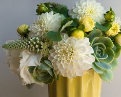 blissful sunny yellow and clouds of white arrangement made from hen and chicks succulent with fully open white dahlias, and there button shaped buds, spring onion, delicate lisianthus and columbine leaves