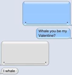 I like whales..