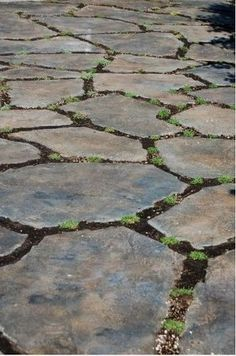 Using broken concrete pieces instead of flagstone for patio I have a large concrete area that I was thinking could be broken up and used for a patio instead of using flagstone. Would like any info on this! Broken Concrete, Concrete Stone, Recycled Concrete, Lawn And Garden, Garden Paths, Home And Garden, Outdoor Projects, Garden Projects, Flagstone Patio