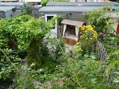 de tuin van boven met de alpenkorb uit garmisch partenkirchen
