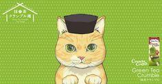 ハーゲンダッツ抹茶クランブル庵で、猫の利休がおもてなし。茶碗を3回まわしてアタリが出たら、1000名様にハーゲンダッツ抹茶づくしアイスクリーム7個セットを差し上げます。