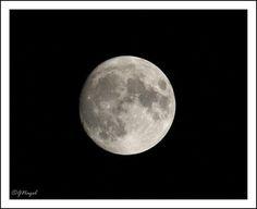 Best Settings for Moon Shots: Nikon DX SLR (D40-D90, D3000-D7100) Talk Forum: Digital Photography Review