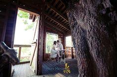 15 Romantic Tree House Decor