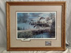 """Lifting to the North"" Ken Zylla Commemorative Print North American Game Bird  #Realism"