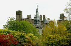 Cardiff Castle by Maggie_Photography on 500px