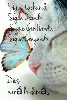 Que asì sea! Quotes About God, Love Quotes, Inspirational Quotes, Motivational Quotes, Positive Phrases, Positive Quotes, Positive Thoughts, Bible Quotes, Bible Verses