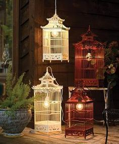Bird cage lights