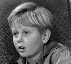 Michael Winkelman the Real MC Coy's | Michael Winkleman as Little Luke McCoy - Sitcoms Online ... 70s Tv Shows, Old Tv, Animation Series, Nifty, Photo Galleries, Comedy, The Past, Drama, Cartoon