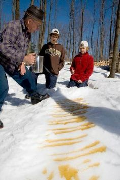 Maple Syrup Festivals in Canada