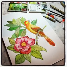 Little birdie painting…  #mywork #marinabarbato #watercolor #aquarela #porummundomaisestampado #printdesign #surfacedesign #designte...