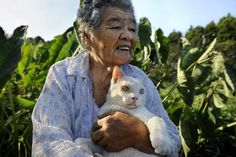 Miyoko Ihara has been taking photographs of her grandmother, Misao and her beloved cat since their relationship began in 2003. Their closeness has been captured through a series of lovely photographs. 2-23-13 / Miyoko Ihara