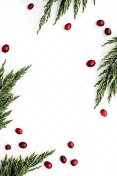 Styled stock photography images featuring red & green holiday decor on a white background. Stock images for creative bus. Illustration Noel, Illustrations, Christmas Illustration, Wallpaper Backgrounds, Iphone Wallpaper, Seasonal Image, Holiday Wallpaper, Holiday Backgrounds, Holiday Images