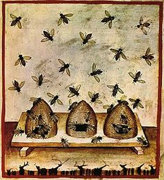 Beekeeping print tacuinum sanitatis (14th century)