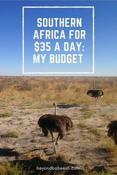 Is Backpacking in Africa Expensive? Here's my Africa travel budget! Africa Destinations, Travel Destinations, Safe Journey, Budget Travel, Travel Info, Travel Ideas, Travel Tips, Cheap Travel, Travel Advice