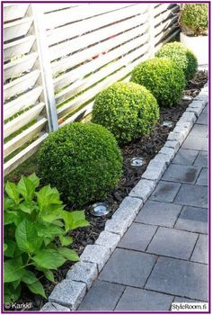 Give your backyard or front lawn a fresh look this time with these gorgeous garden design ideas. terrace garden 62 Amazing Fresh Frontyard and Backyard Landscaping Ideas Garden Shrubs, Terrace Garden, Boxwood Garden, Boxwood Hedge, Terrace Ideas, Back Gardens, Outdoor Gardens, Modern Front Yard, Front Yard Landscaping