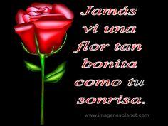 http://2.bp.blogspot.com/-QpUHJnAId0k/U-WVsJEwR7I/AAAAAAAAMRc/t6o0jf5b7xE/s1600/imagenes-gif-de-rosas-con-frases-deamor.gif