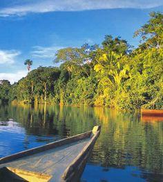 Amazonia1_large